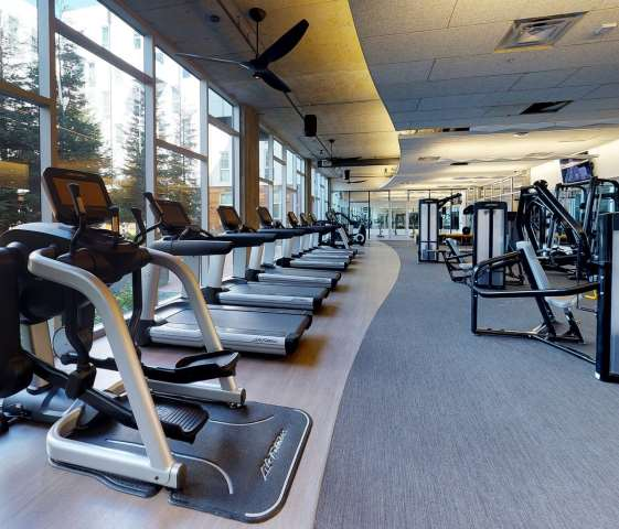 Some of the best treadmills in a room